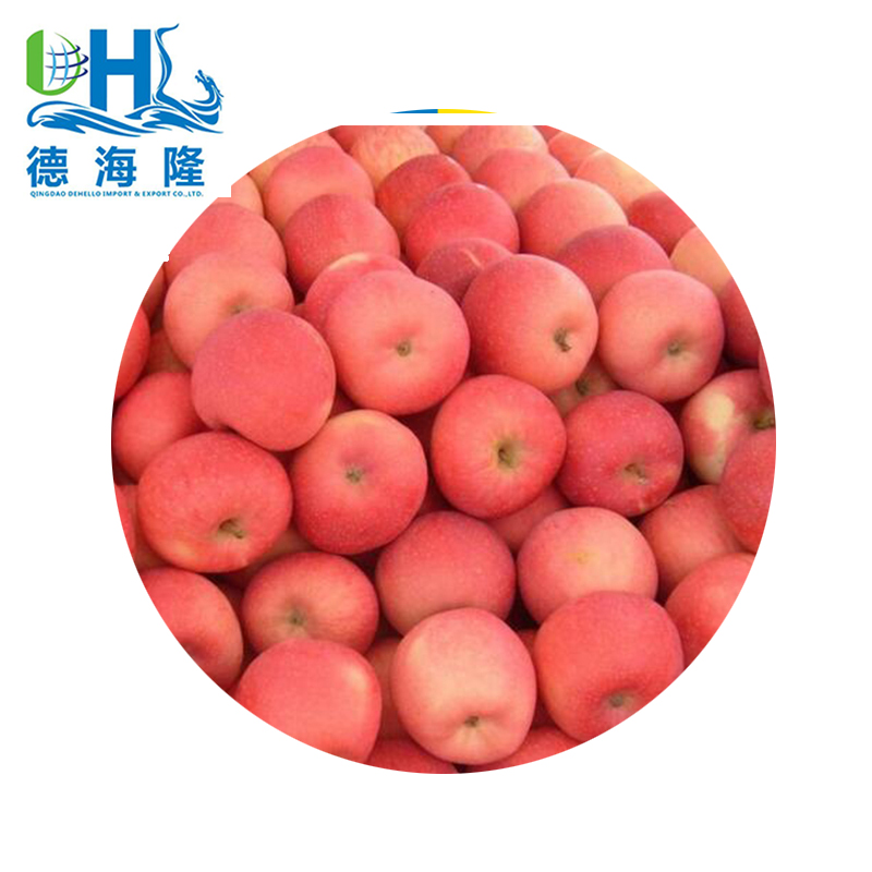 Chinese best price Fresh Fuji sweet apple
