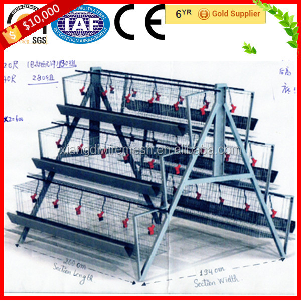 Layer Chicken Brooder Cage For Sale