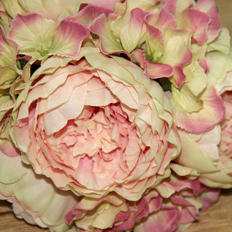 China hotsale Bulk production Real Touch artificial paper large peony flowers