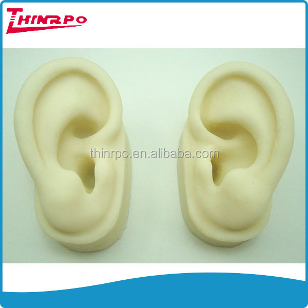 Wholesale Artificial 3D Ears Model Display Use Soft Silicone Made