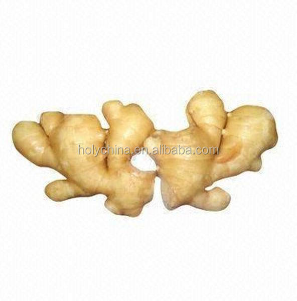 hot sale high quality buyer of ginger
