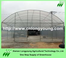 Strawberry 7m Shade House For Vegetable