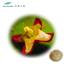China Suppliers Sexual Products Ingredient Epimedium Extract Horny Goat Weed Extract Icariin 10% 20%