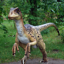 FD0102Manufacture Simulation Dinosaur Products Animatronic Models Artificial Baby