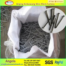 nail supplies 2 inch common wire nail / price of iron nails/ common nail iron nail factory