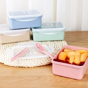 Biodegradable Wheat Kids Food Warmer Lunch Box
