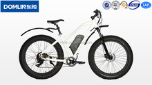 CE and ISO4210 certificated 36V 10Ah Lithium battery alloy 4.0 tire electric fat bike