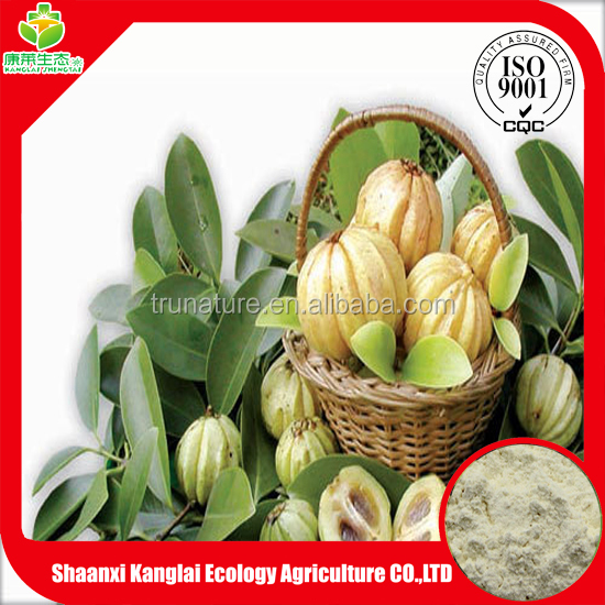 ISO Certificated Garcinia Cambogia Extract Powder 80% Hydroxycitric Acid Best for Weight Loss