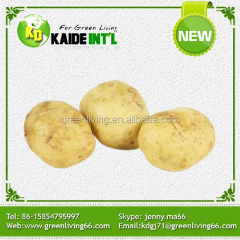 new brand holland natural potato