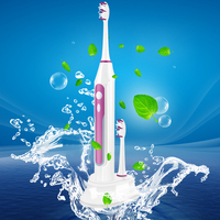 YASI FL-A15 sonic electric toothbrush for adult traveling toothbrush fashion design in wholesale
