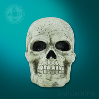 New product plastic medical human 3d skull model/head skeleton