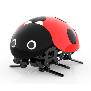 Chinatopwin 2.4G DIY beatles ladybug robots rc vehicle toy for Kids