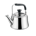 Elegant Stainless Steel Water Kettle