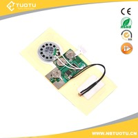 Voice recordable motion sensor sound chip