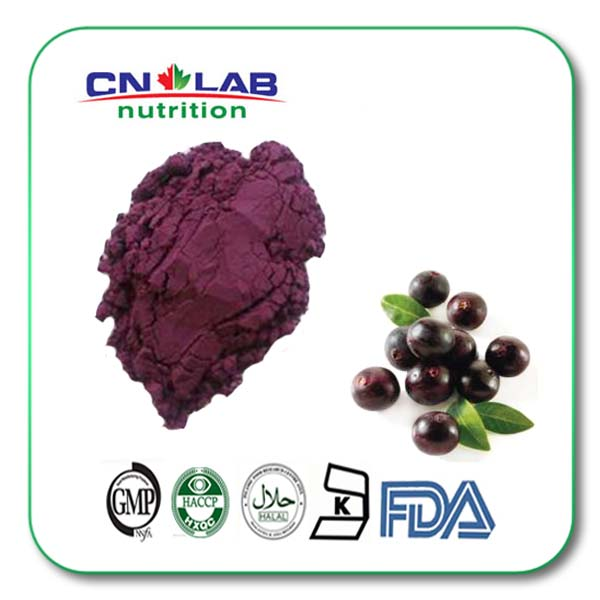 Acai Berry Juice Extract with Powder/Acai Berry Juice Supplement with Powder