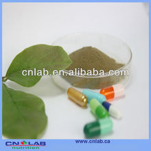 Epimedium Leaf Extract Increase Male Performance and Sexual Stamina