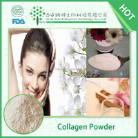 Super low molecular/high absorption/ fast-acting/ salmon fish collagen powder