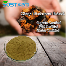 Chinese Supplier Siberia Chaga Extract Powder