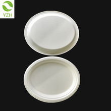 Biodegradable disposable sugarcane oval paper white dinner plate
