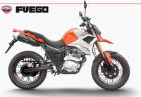 new latest model 250cc dirt bike/ 250cc TEKKEN sports motorcycle