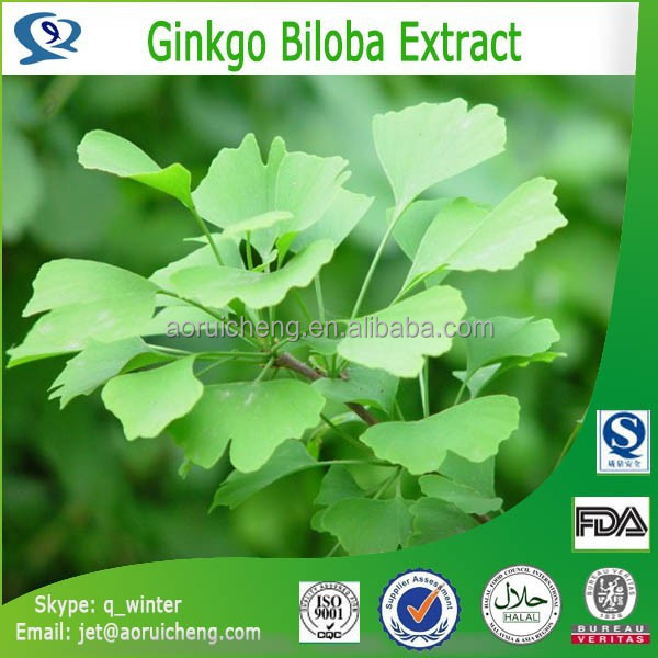 Best selling product free sample heath care product ginkgo biloba leaf extract tablet