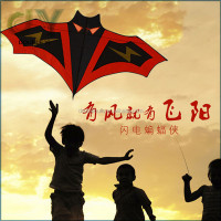 Hot sale promotional cheap child flying kite