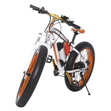 Big Power Fat Tire Electric Bike Snow e-Bike 1000w Cheap Electric Bicycle for Sale