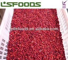 Best price IQF frozen lingonberry