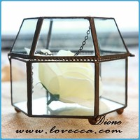 DIONE~hanging glass planter, hanging glass ball terrarium, glass terrarium container