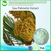 Best price Saw palmetto P.E 25% 45% fatty acid