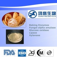 Heat stable enzymes Food Additive Fungal Alpha Amylase