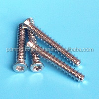 Stainless Steel Torx Drive PT Screw