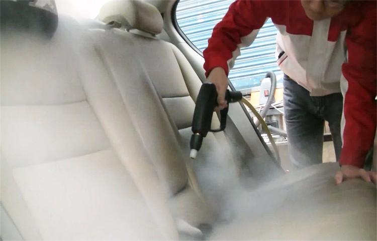 HF3160V Steam Vacuum Cleaner for Car Interior Cleaning.jpg
