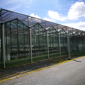 High quality mini garden industrial orchid glass greenhouse