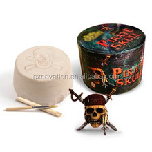 Archaeology Dig and Discover kit toy of Pirate Skull fridge magnets dig kit.