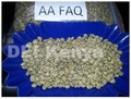 Kenya Grade AA FAQ Coffee