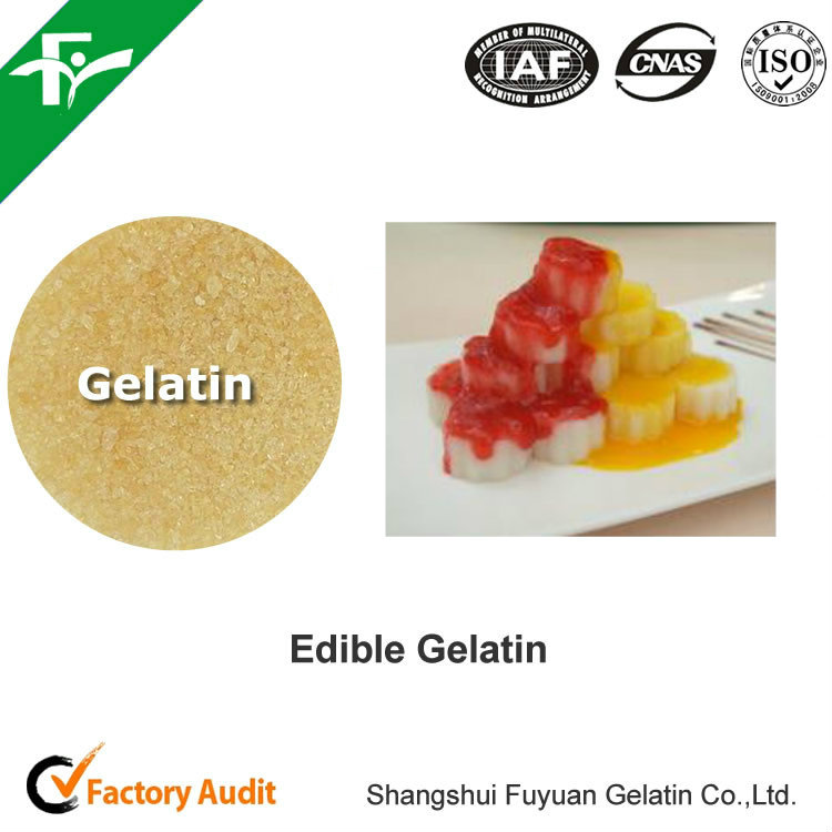 Healthy Halal Hydrolyzed Edible Gelatin Powder For Gummy candy or Marshmallow