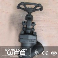 Thread Pipe Fitting Flange 316 Stainless Steel Globe Valve