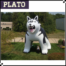 fierce inflatable husky for event, promotional inflatable model