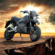 2000w electric dirt bike outdoor chinese very cheap mountain e-bike with Nirvana factory brand