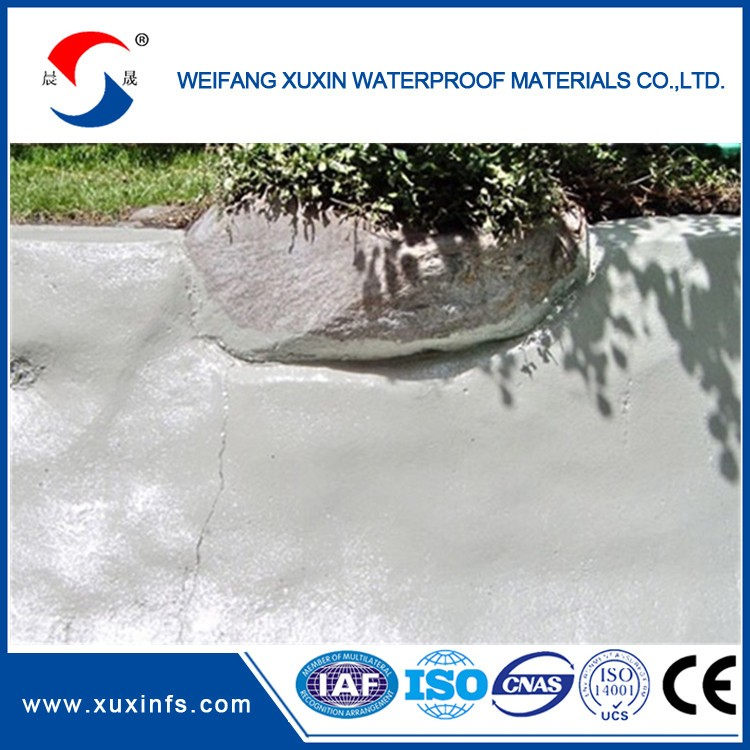 Acrypol+ Flat Roof Waterproofing Solution waterproof acrylic spray paint