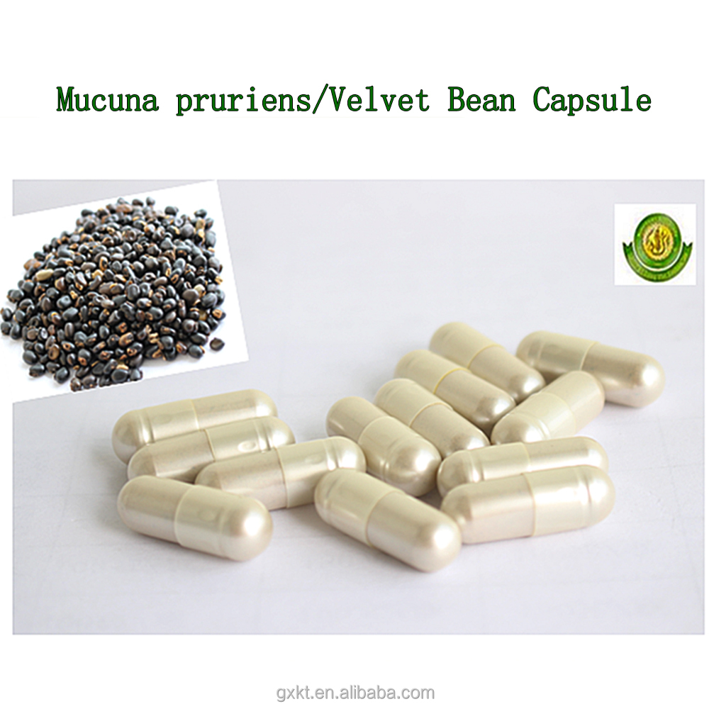 Bulk Mucuna Pruriens/Velvet Bean seeds extract for man sex power medicine