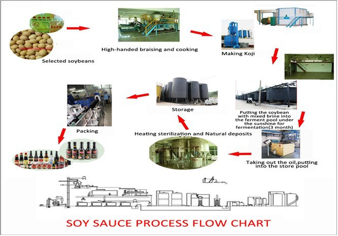 Chinese supplier Mushroom soy sauce Magic Seasonings factory