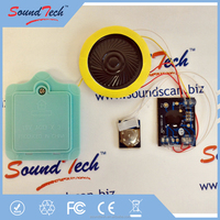 Sound module with 40mm speaker battery compartment sound module for books