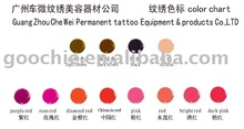 various glitter tattoo/permanent makeup cosmetic pigments