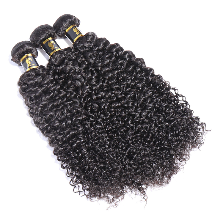 The Best Raw Cambodian Hair, Cuticle Aligned Raw Cambodian Hair Unprocessed Virgin, Kinky Curly Cambodian Hair Extension Vendors