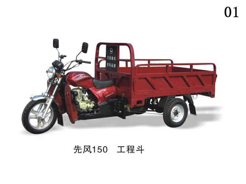 China manufacturer with OEM service;3 wheel cargo tricycle motorcycle in Malaysia market