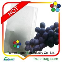 grape growing paper bag for agriculture