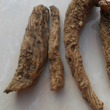 Fa Luo Hai herbal remedy herbal plant healthy herbs Angelica apaensis Shan et Yuan