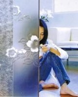 4-19mm Acid Etched Glass/clear Frosted Glass Price